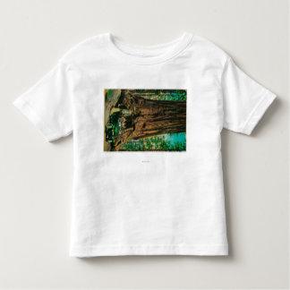 The Mariposa Big Tree Grove, Yosemite Tshirt