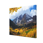 The Maroon Bells in Autumn Gold Gallery Wrap Canvas