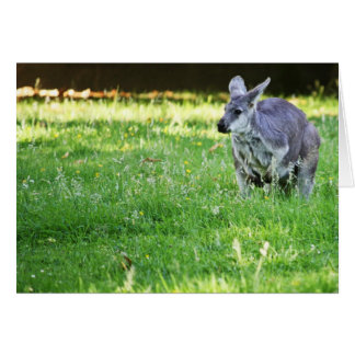 The Marsupial Card
