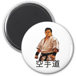 The master of a karate refrigerator magnets