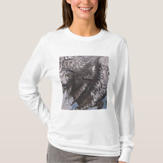 The McMurdo Dry Valleys T-Shirt