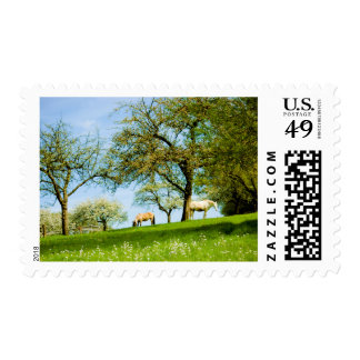 The Meadow Stamp