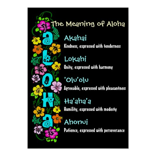 The Meaning of Aloha Poster