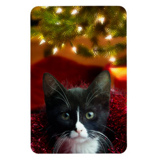 The Meaning of Christmas Rectangular Photo Magnet