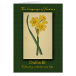 The Meaning of the Daffodil (Narcissus) Greeting Card