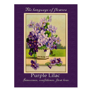 The Meaning of the Lilac Postcard