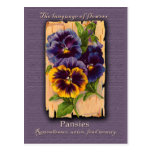The Meaning of the Pansy Postcard