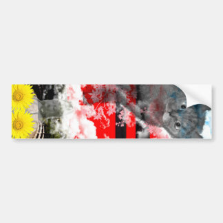 The Merciful Goddess 菩 薩 with flower and cat Ise s Bumper Stickers
