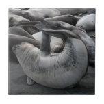 The Mermaid Seal - Tile