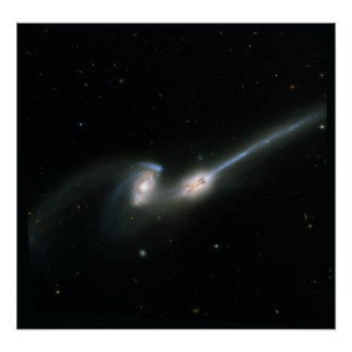 The Mice (NGC 4676)- Colliding Galaxies Posters