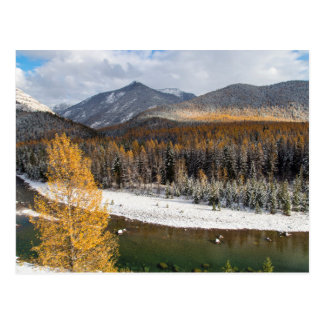 The Middle Fork Of The Flathead River Postcard