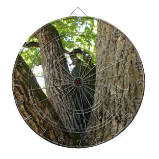 The mighty and powerful oak branches closeup dart boards