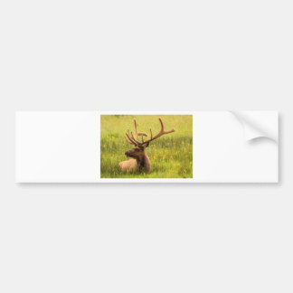The Mighty Elk Bumper Sticker