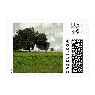 The Mighty Oak Postage Stamp