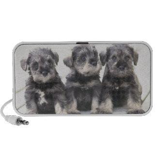 The Miniature Schnauzer is a breed of small dog Mini Speaker