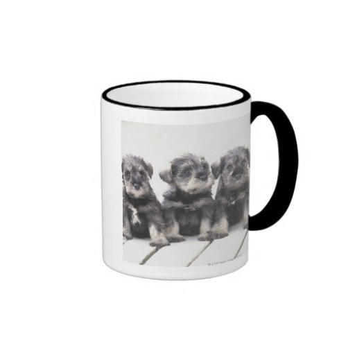 The Miniature Schnauzer is a breed of small dog Coffee Mugs