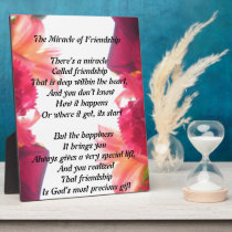 The Miracle of Friendship plaque