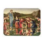 The Mirror of Venus, 1870-76 (oil on canvas) Rectangular Magnets
