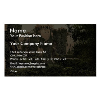 The moat, Raglan Castle, England magnificent Photo Double-Sided Standard Business Cards (Pack Of 100)