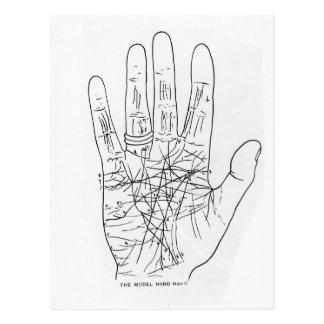 The Model Hand Postcard