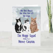 The Moggy Squad Three Cats Christmas Holiday Card