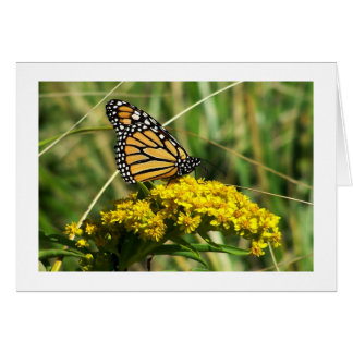 The Monarch of Skaket Beach Stationery Note Card