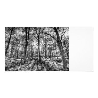 The Monochrome Forest Card