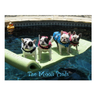The Moon Pieds Pool Float Postcard