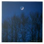 The Moon Tile