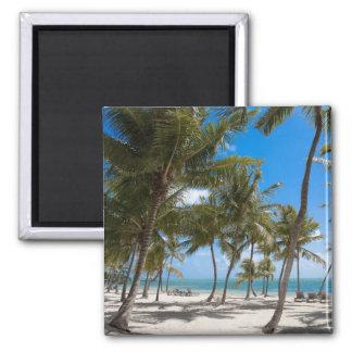The Moorings Resort, Marathon, Key West, 2 2 Inch Square Magnet