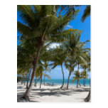 The Moorings Resort, Marathon, Key West, Postcard