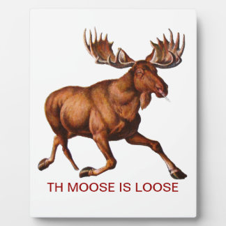 THE MOOSE IS LOOSE PLAQUE