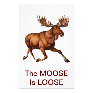 THE MOOSE IS LOOSE STATIONERY