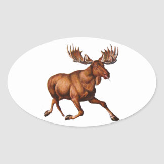 THE MOOSE IS LOOSE OVAL STICKER