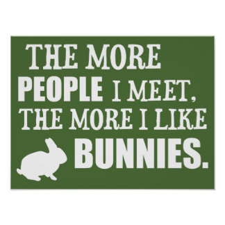 The More I Like Bunnies Poster