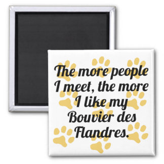 The More I Like My Bouvier des Flandres 2 Inch Square Magnet