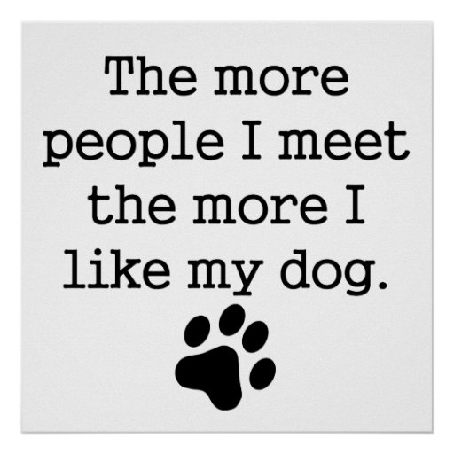 The More I Like My Dog Poster