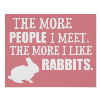 The More I Like Rabbits Poster