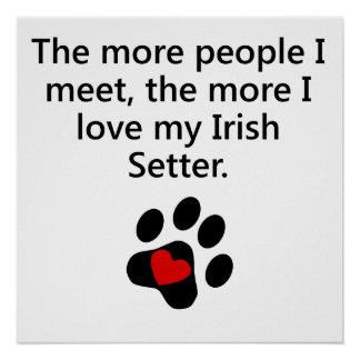 The More I Love My Irish Setter Posters