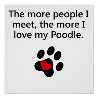 The More I Love My Poodle Poster