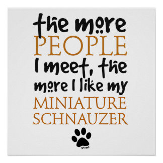 The More People I Meet ... Miniature Schnauzer Poster