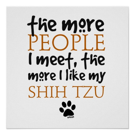 The More People I Meet ... Shih Tzu Poster