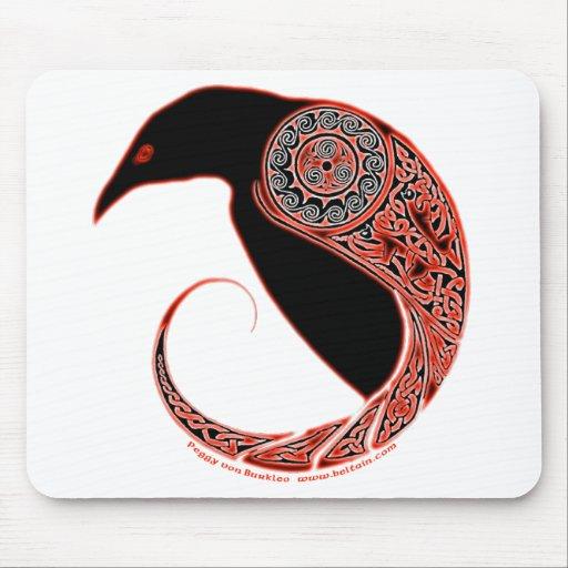 pin by karla gruber on native american pinterest ravens haida art and native art. Black Bedroom Furniture Sets. Home Design Ideas
