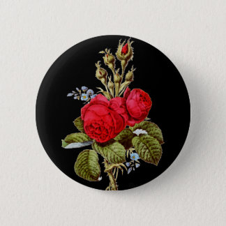 The Moss Rose - Vintage Fine Art Pinback Button
