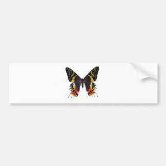 The most beautuiful butterfly in the world bumper sticker