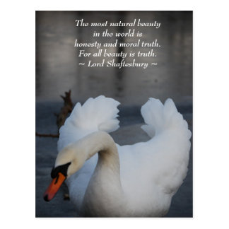 The most natural beauty postcard