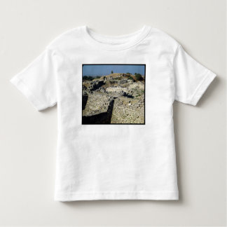 The Mound of Hissarlik, the site of Tee Shirt