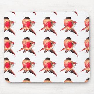 The mouse pad of Asian Arowana, No.04