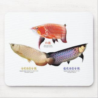 The mouse pad of Asian Arowana of 3 types, No.02