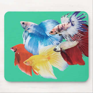 The mouse pad of Betta, No.06
